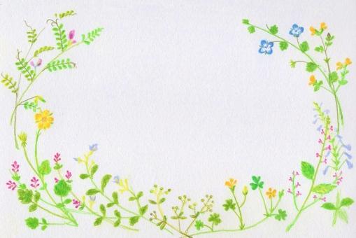 Wild flower series ~ Frame side ~