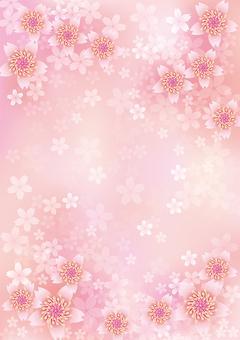 Blooming flowers 347