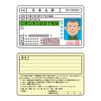운전 면허증 (개정 후)