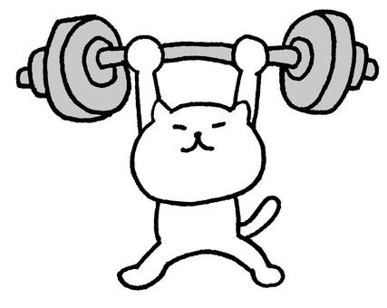 Cat Barbell