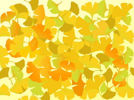 Japanese-style material Autumn leaves background Ginkgo