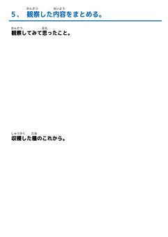 自由研究09