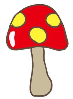버섯 -64