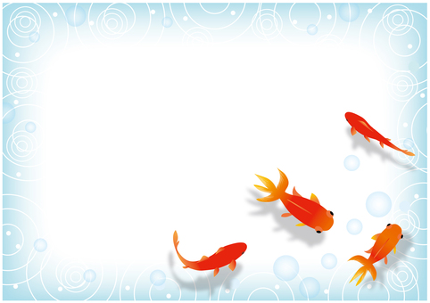 The background of the goldfish to swim