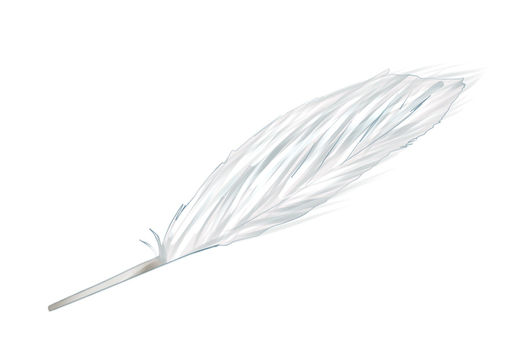 Feather ①