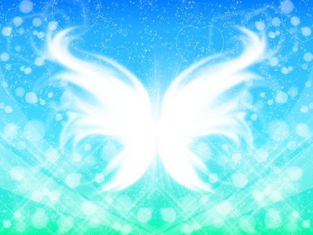 Fresh butterflies