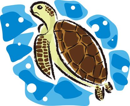 Sea turtle 01 - color 2