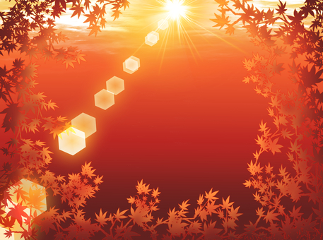 The sun shining between the autumn leaves