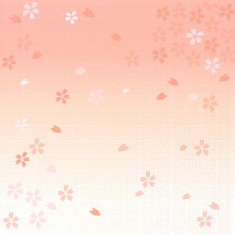Textured cherry blossom background