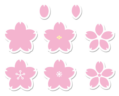 櫻花花白色與陰影