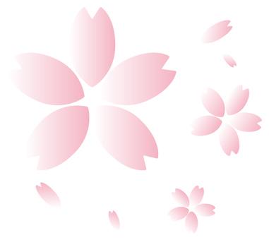 Sakura 01