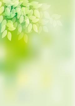 Fresh green 5