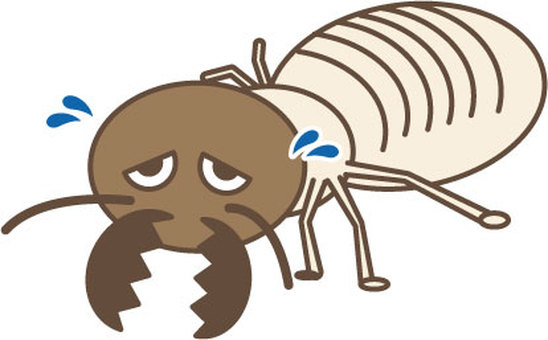 Termite character 3