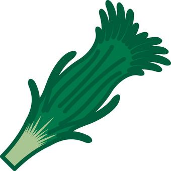 Nila vegetable vegetable