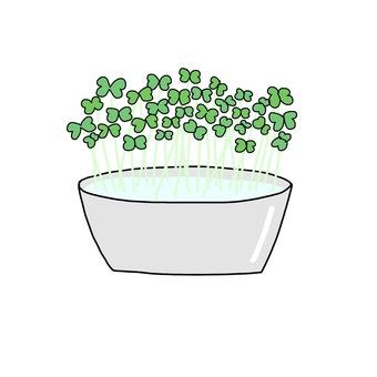 Broccoli sprite