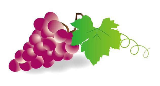 Autumn material _ Grapes