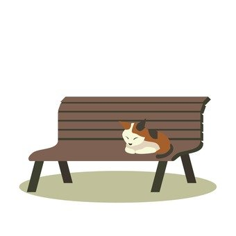Bench and cat