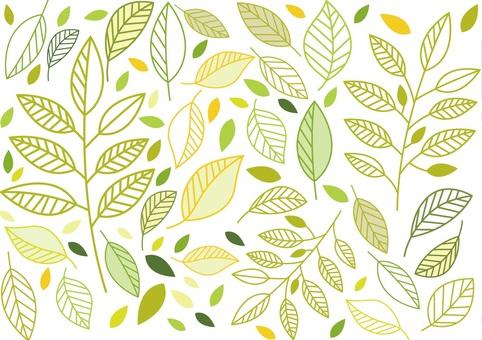 Leaf background image