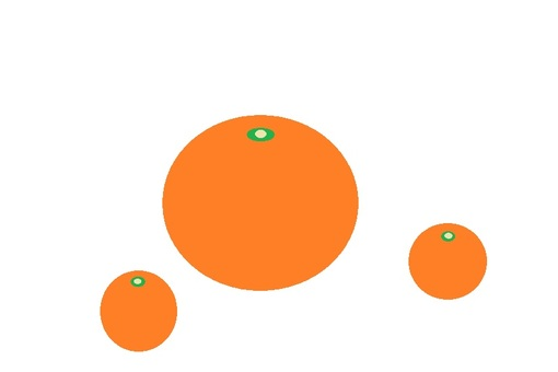 Mandarin orange 234