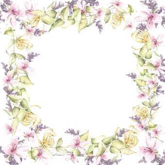 아로마 꽃 꽃 프레임 - 프레임