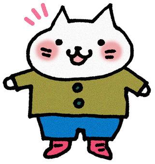 Winter clothes cat