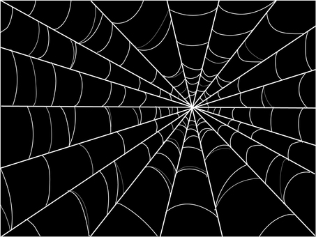 Spiders' web