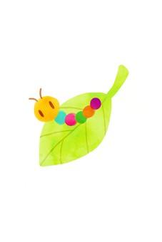 Colorful wormwood