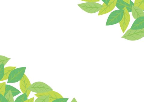 綠葉框架11