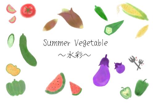 Assorted watercolor summer vegetables