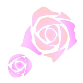 핑크 장미 꽃