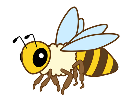 Honey bee _12