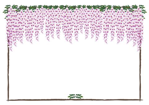 포도 나무