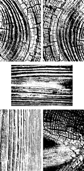 Woodgraining texture 02
