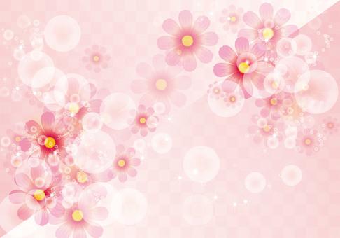 Flower pattern Cosmos 1