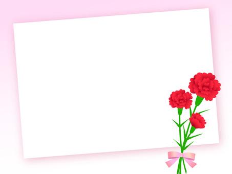 康乃馨花束1-2