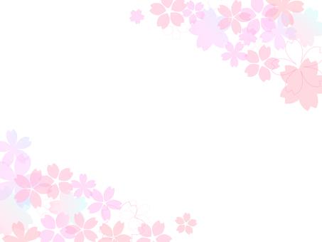 Cherry blossom image 005