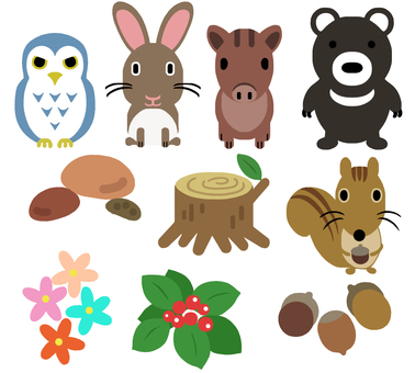 Forest animals and forest plants