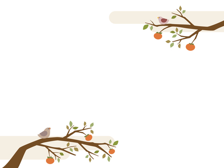 Persimmon tree illustration