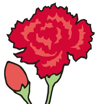 Carnation (red)