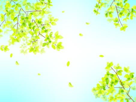 Fresh green illustration 02