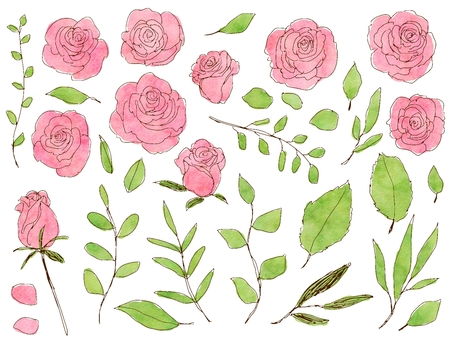 Rose and grass pink