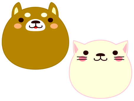 Face animals dog and cat