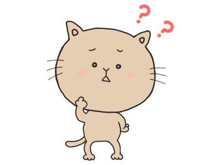 why cat