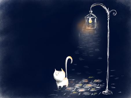 散歩猫街頭