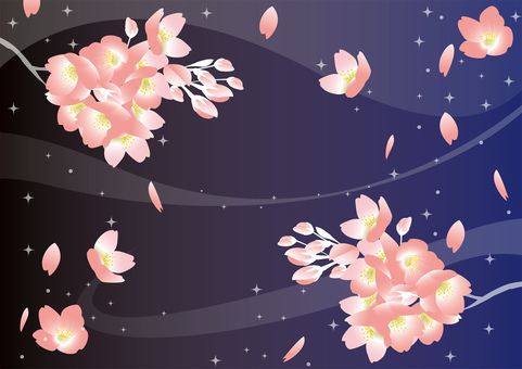 Night cherry blossom background illustration