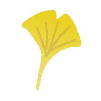 Fallen leaves _ Ginkgo biloba