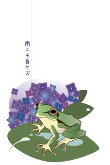 장마 개구리와 수국