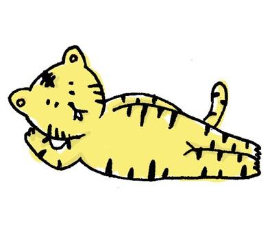 Lying down tiger