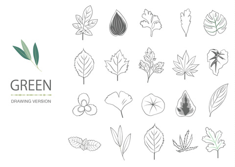 Handwritten drawing drawing leaf collection