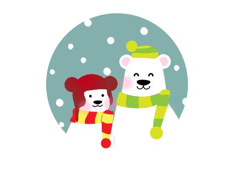 겨울의 흰색 곰